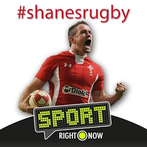 Shanes Rugby