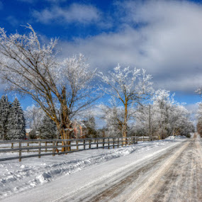 Beauty found  by Debbie Johnson MacArthur - Landscapes Weather