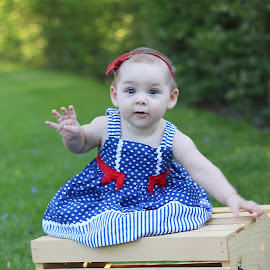 Yankee Doodle Sweetheart  by Kari McClure Webb - Babies & Children Babies ( white, baby girl, usa, flag, red, girl, blue, dress, outdoors, july, celebration, baby, crate, independence day,  )