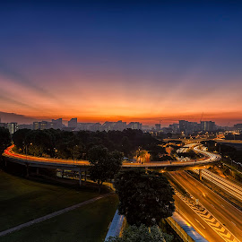 Morning Glow by Lb Chong Jacobs - City,  Street & Park  Skylines ( ray, dawn, tree, sunrise, landscape, glow, morning, light )