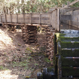 The Old Miill by Dana Wigton - Buildings & Architecture Public & Historical ( mill, cades cove,  )