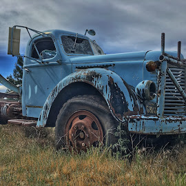 by Becca McKinnon - Transportation Automobiles ( blue, truck, international, historic, abandoned )