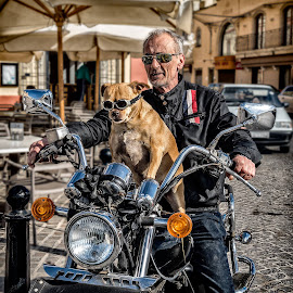 Going for a ride by Henri Mattocks - Uncategorized All Uncategorized