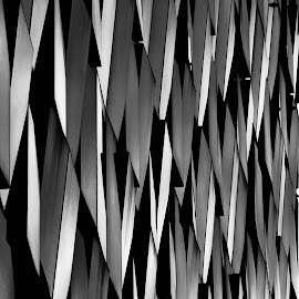 by Erminio Vanzan - Abstract Patterns ( minimalism, black and white )