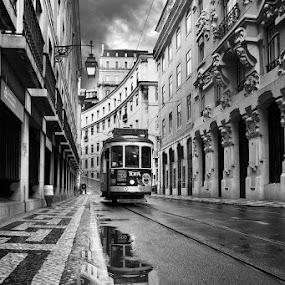 Lisbon by Jorge Maia - City,  Street & Park  Street Scenes