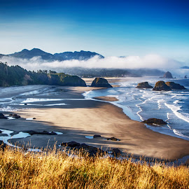 Ecola State Park by Richard Michael Lingo - City,  Street & Park  Vistas ( vistas, beaches, oregon, parks, ecola state park )