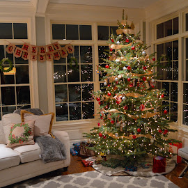 Merry Christmas by Rob Kovacs - Public Holidays Christmas