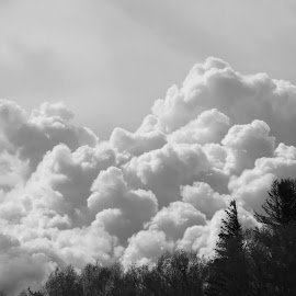 by George Trujillo - Landscapes Cloud Formations