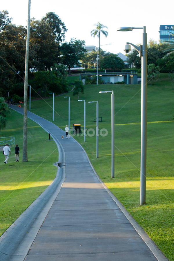 Roma St by David Millard - City,  Street & Park  City Parks ( footpath, roma, walking, park, street, brisbane, track, gardens, parklands )
