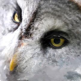 by Shaun West - Digital Art Animals