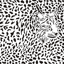Lynx background by Vladimir Ceresnak - Drawing All Drawing ( eurasian, abstract, cat, graphic, fauna, decoration, illustration, drawing, bobcat, carnivore, background, fur, design, repetition, animal )