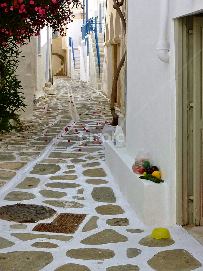 Aegean Village Laneway by Leigh Thomson - City,  Street & Park  Street Scenes ( picturesque, cobbled, europe, paros, greek, greece, tourism, street scene, travel, postcard, lane alley, aegean, whitewashed, mediterranean, islands, flowers )