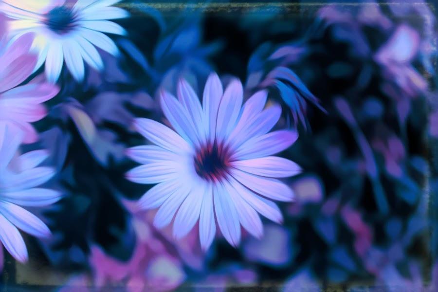 by Mark Wathen - Digital Art Abstract ( watercolor, purple, petals, floers )