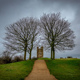 Broadway Tower by Graham Davey - Buildings & Architecture Public & Historical ( tower, sky, 2016, trees, broadway )