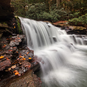 Deckers will Fall by Kevin Frick - Landscapes Waterscapes ( west virginia, waterfall, leaves )