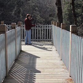 An iron fence to Connessee Falls by Terry Linton - Buildings & Architecture Other Exteriors ( fence, nature, woman, camera, trees, photographers, taking a photo, photographing, photographers taking a photo, snapping a shot )