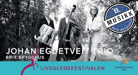 Johan Egdetveit Trio
