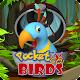 Pocket Birds Go!
