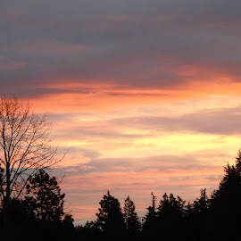 EVENING COMES by Cynthia Dodd - Novices Only Landscapes ( clouds, skyline, sky, sunset, trees, landscape )