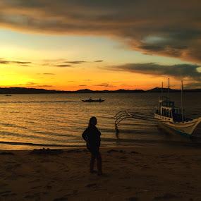 golden hour  by Sue Cuachon - Landscapes Sunsets & Sunrises