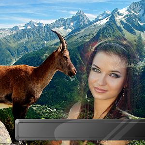Download Wild Animals Photo Frames For PC Windows and Mac