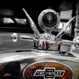 Chevrolet in Style by Bethany Davies - Transportation Automobiles ( car, old car, vintage, chevrolet, brown,  )