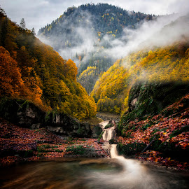 Dream away by Raoul Poenar - Landscapes Forests ( mountains, fog, color, autumn, colors, forest, long exposure, river, mist )
