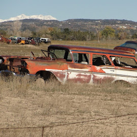 Gutted by Rob Hallifax - Transportation Automobiles ( #rusty, #rust, #58chevywagon, #abandoned, #fieldofdreams )