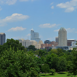 City View by Thomas Shaw - City,  Street & Park  Skylines ( clouds, building, skyline, park, grass, skyscrapers, green, downtown raleigh, cityscape, raleigh, city, north carolina, sky, skyscraper, blue, buildings, trees, view, downtown, skyscape )