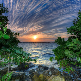 Mangroves on the bay by Rick Mann - Landscapes Waterscapes ( clouds, water, sky, nature, weather, sun )