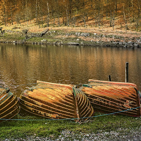 3 row boats by Stephen Hooton - Landscapes Waterscapes ( lakes )
