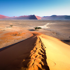 dune de Namibie by Olivier Tabary - Landscapes Deserts