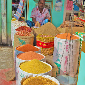 Spices by Briana Jones - Food & Drink Ingredients ( market, spices )