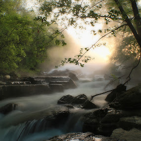 THE AWAKENING by Dana Johnson - Landscapes Waterscapes ( stream, dawn, morning light, waterscape, forest, landscape, rocks, river )