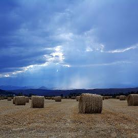 Storm rolls on by Dan Berry - Landscapes Prairies, Meadows & Fields ( montana, storm,  )