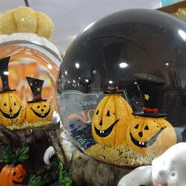 by Pal Mori - Public Holidays Halloween