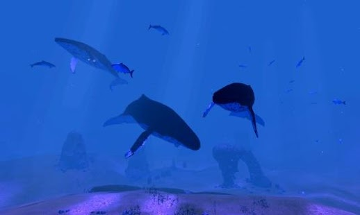 Whale song VR - screenshot