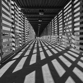 Shadows by Rob Hallifax - Black & White Buildings & Architecture ( #shadows #bridge #kansascity #blackandwhite #monochrome #bnw )