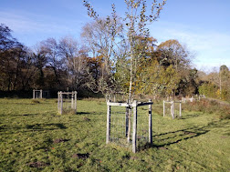 Photo 2 / 2 - March 2017 Swan Barn Orchard Stock Fence