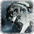 Arctic Wolf Wallpaper APK for Ubuntu