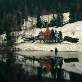 Labska Prehrada  by Michal Valenta - Landscapes Travel