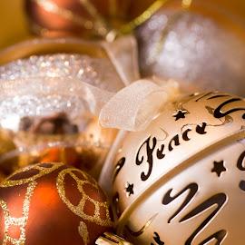 Peace . by Susan Pretorius - Public Holidays Christmas