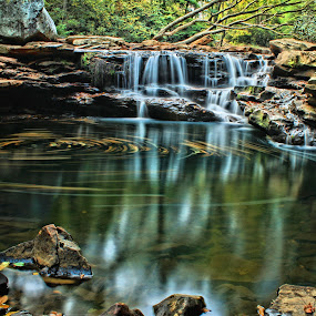 Big Swirl by Kevin Frick - Landscapes Waterscapes ( west virginia, swirl, waterfall, leaves )