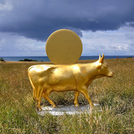 Sculpture on Ærø, Denmark by Keld Helbig Hansen - Artistic Objects Other Objects