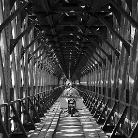 Bridge of Live by Perry Firmandira - Buildings & Architecture Bridges & Suspended Structures ( steelbridge, bridge, architecture, manmadestucture, pwcbridges )
