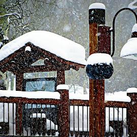 by Irina Aspinall - Digital Art Places ( oilpainting, winter, jackson, wyoming, snow, digital art )