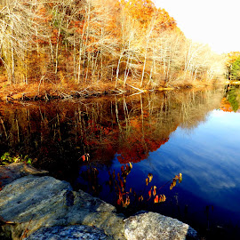 New England Fall by Martin Stepalavich - City,  Street & Park  City Parks