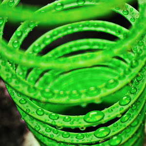 Slinky Standing.jpg