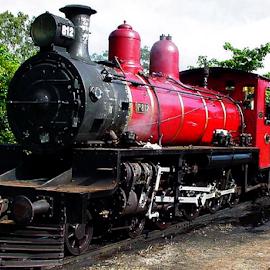 Bygone Days by Peter Keast - Transportation Trains ( railroad, steam train, australia, train, transportation )