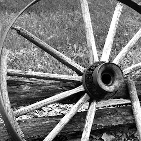 Wagon Wheel by Virginia Folkman - Artistic Objects Other Objects